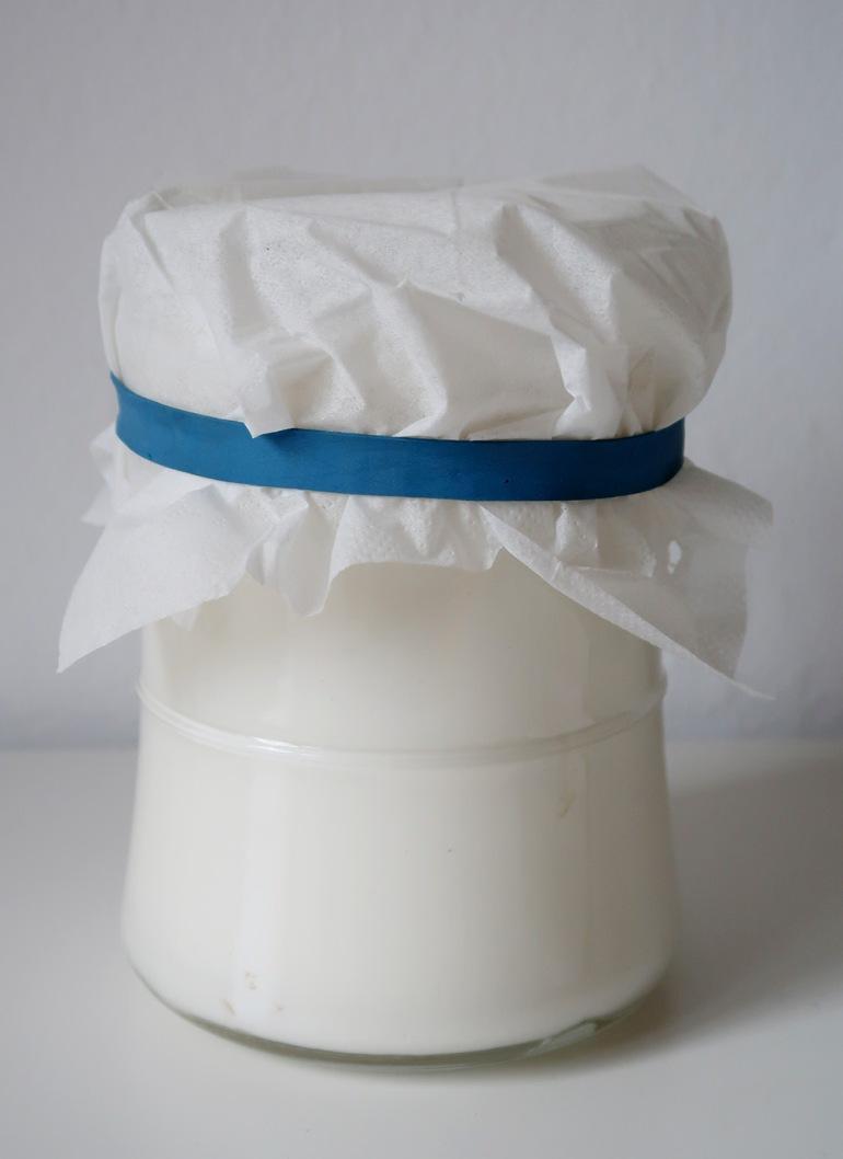milk-kefir2